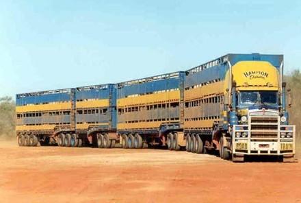 oad train - cestovni vlak za prijevoz stoke