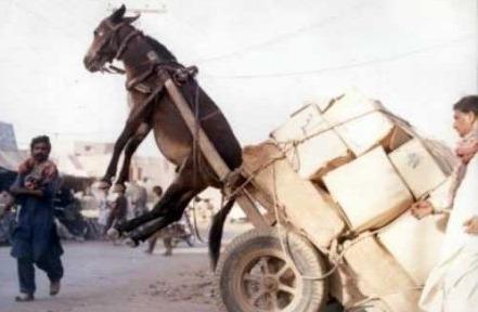 Nezgoda s magarećim motorom