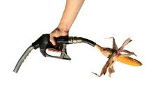 Bio-goriva