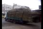Investicija RALU Logistike: 90 MAN TGX tegljača za 50 milijuna kuna